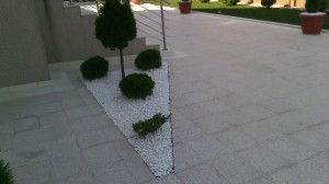 oblutak u dvoristu